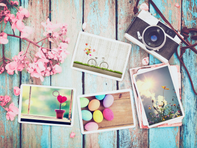 Цветы, фото, яйца, весна, камера, colorful, Пасха, wood, pink, flowers, camera, spring, Easter, eggs, decoration
