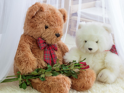 Игрушка, розы, мишка, bear, romantic, teddy, roses