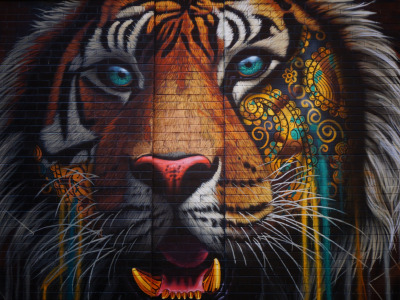 Colorful, wall, Tiger, texture, bricks, animal, artwork, wild cat, street art, fangs, ornamented