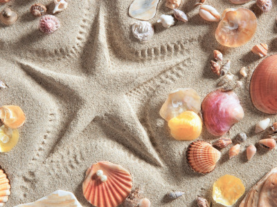 Песок, пляж, фон, звезда, ракушки, summer, beach, background, sand, marine, starfish, seashells